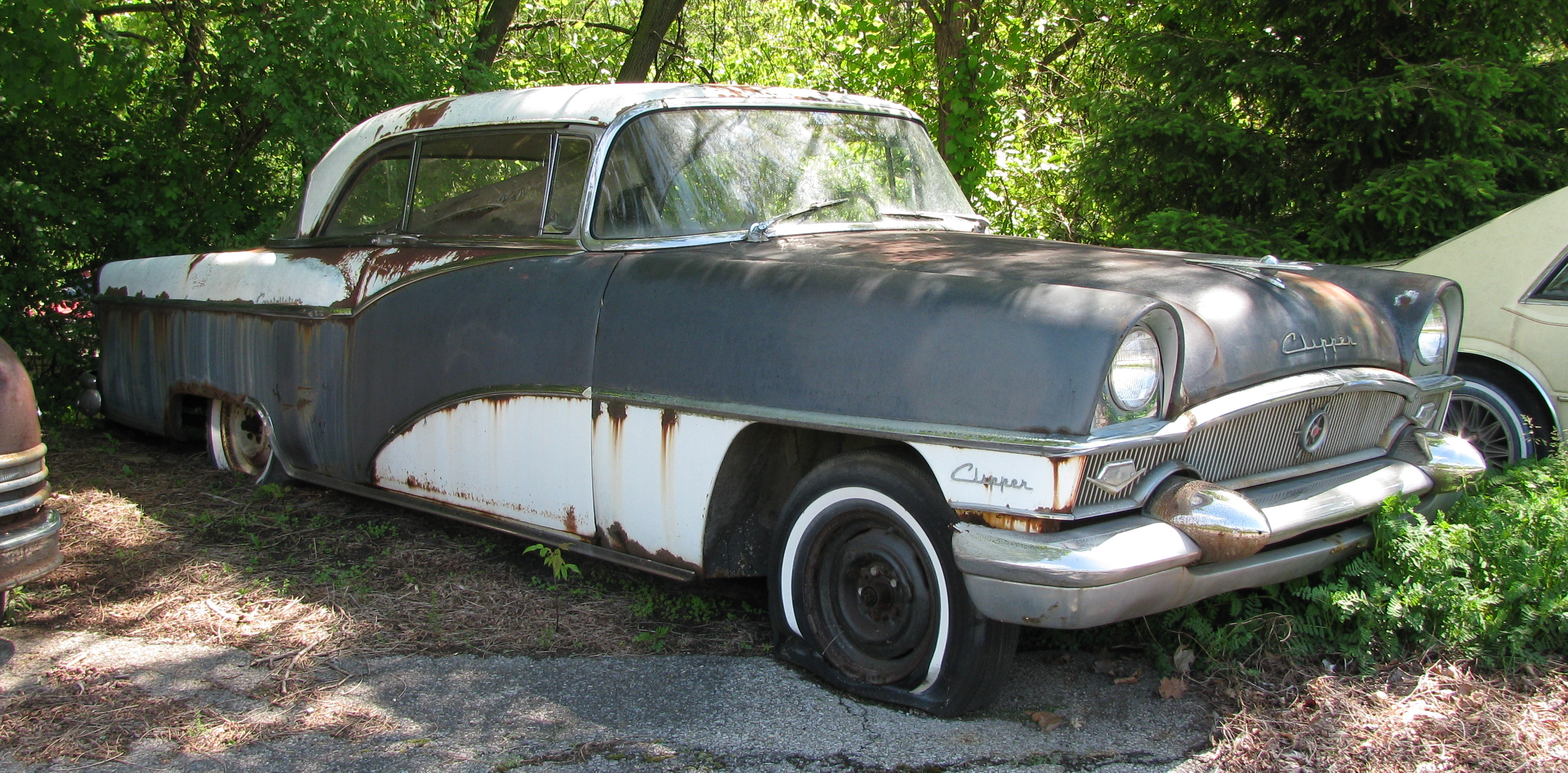 1955 Packard Clipper in top of